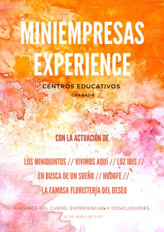 miniempresas experience