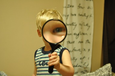 magnifying-glass-552852_1920