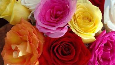 flowers-2897542__340.jpg